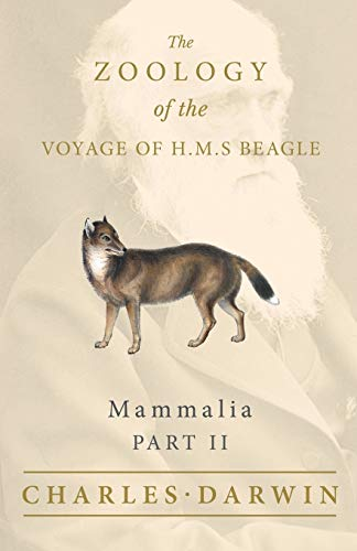 Mammalia - Part II - The Zoology of the Voyage of H.M.S Beagle: Under the Command of Captain Fitzroy - During the Years 1832 to 1836 (English Edition)