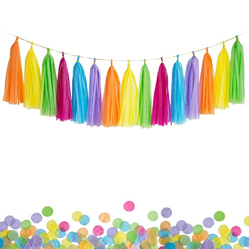 ANSOMO Colorful DIY Tissue Paper Tassel Garland Rainbow Fiesta Multicolor Banner - 30 PCS