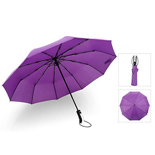 Bakicey Regenschirme, Winddicht Regenschirm Regen und Windresistent Taschenschirm Auf-Zu-Automatik Leicht kompakt Stabiler Schirm mit 10 Rippen Schirm für Reisen Business (Lila)