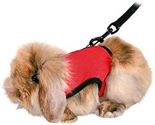 Trixie Pet Harness with Leash