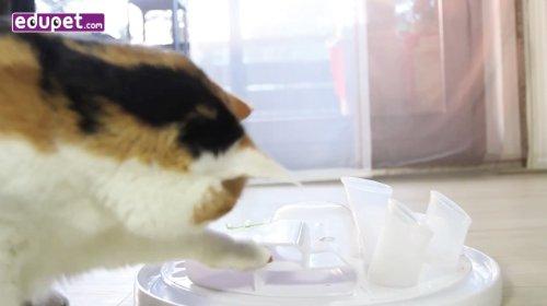 Bayer Design 05005 Edupet Cat Center – Katzenspielzeug - 8