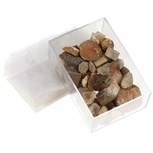 Scicalife Gestein & Mineral -...