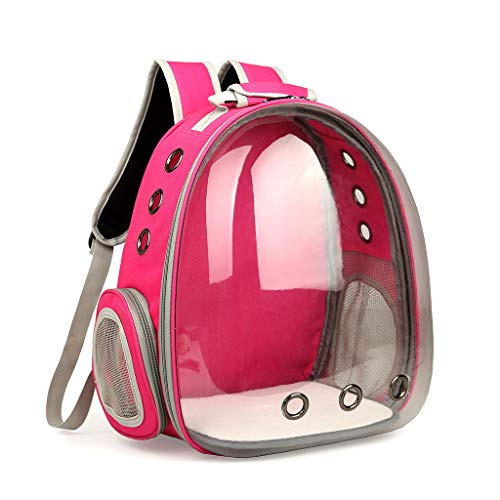 XINGYUE Mochila de viaje transpirable transparente para mascotas y gatos