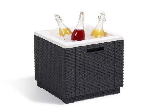 Allibert Kühlbox/Beistelltisch Ice Cube - 5