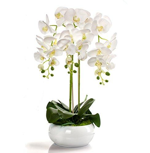 Gesteck künstliche Orchidee im Keramik Übertopf - Gesamthöhe: ca. 65cm | Stoffblüten | Farbe: Weiß - Ecru | Gesteck Orchidee Kunstpflanze Arrangement Kunstblumen Tischdeko Fensterschmuck