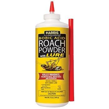 Best roach pruff Reviews