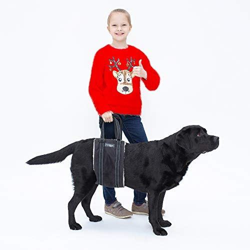 Clumsy-Pets Portable Dog Lift Harness - Support for Rear Legs & Hips - Extra Padded Handles for Easy-Walk and Fast Recovery - Black Large Size