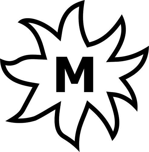 Brandzeichen der Pferderassen: Edelbluthaflinger – Pferdezucht, Autoaufkleber, KFZ-Aufkleber // verschiedene Farben und Größen (Silber - 100 mm x 100 mm)