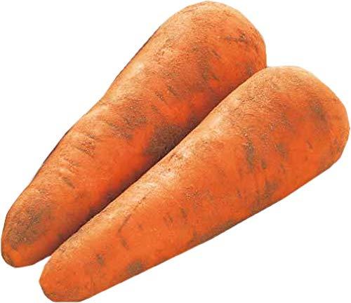 【ムソーの安心野菜】有機人参(洗い) 10kg 冷蔵