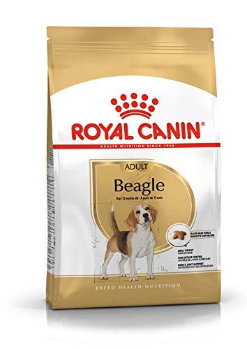 ROYAL CANIN Cibo Secco per Cane Adulto Beagle - 12000 gr