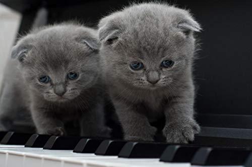 LIZELUO Kinder Holz Puzzle 1000 Teile Katze Am Klavier Creative Kreuzworträtsel Spiel Modern Zuhause Dekoration Einzigartiges Geschenk