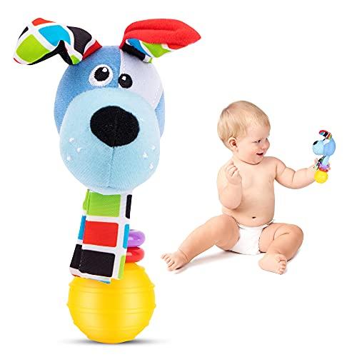 LUDAZON Sonaglio Neonato Montessori, Sviluppa Le capacità Motorie e Sensoriali, Giochi Neonato 0-3 4 5 6 7 8 9 10 11 12 Mesi, Maracas per Bambini, Ideale per Regali Nascita Maschio Femmina