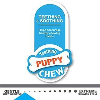 شراء Nylabone جرو مضغ الكلب لعبة تشيو تشيو