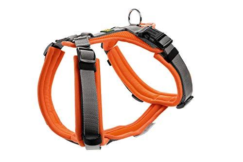 HUNTER Maldon Hundegeschirr,Y-Form, weich gepolstert, ideal für sportliche Aktivitäten Farbe orange/grau, Größe M-L