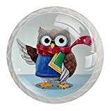 4 Pack 1.18 Inch Kitchen Cabinet Knobs Drawer Knobs Dresser Knobs Crystal Glass Knobs Drawer Pulls Door Knobs Dresser Drawer Handles Knobs for Dresser Drawers,Cute Owl with Scarf Books