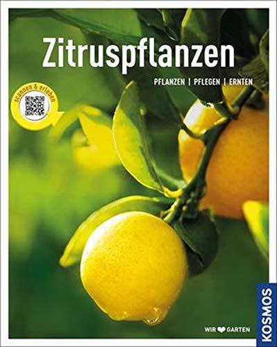 Zitruspflanzen: gestalten - pflanzen - ernten