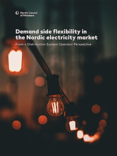 Demand side flexibility in the Nordic electricity market:: From a Distribution System Operator Perspective (TemaNord Book 2017564) (English Edition)