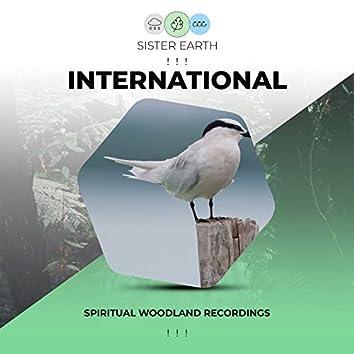 ! ! !  Spiritual International Woodland Recordings ! ! !