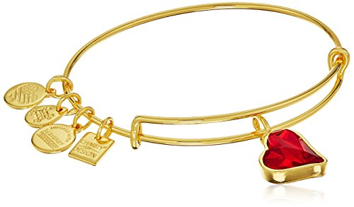 Alex and Ani Charity By Design Heart of Strength Armband glänzend Gold und Rot
