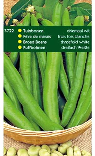 5 stuks Tuinbonen driemaal wit 250 gram