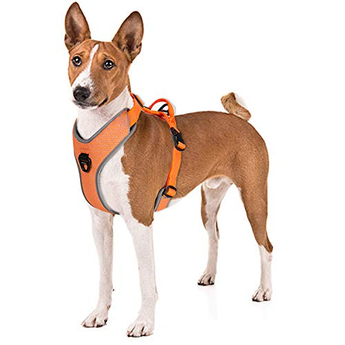 No Pull Dog Harness with Handle, Front Clip for Easy Walk Training Hiking, No Choke Adjustable Reflective Soft Padded Heavy-Duty Dog Vest for Small/Medium/Large Breed Dogs Puppy - Best Dog Puppies