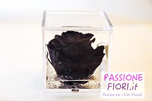 Cubo Rose Stabilizzate Profumate 8X8X8 (Nera)