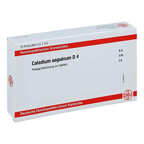 Caladium seguinum D4 Amp 8X1 ml