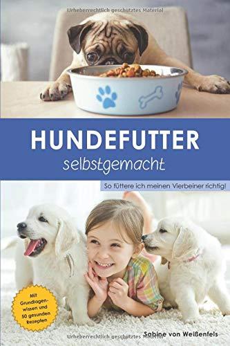 Hundefutter selbstgemacht: So füttere ich meinen Vierbeiner richtig!