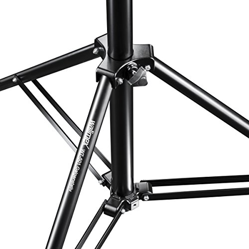Walimex Pro WT-501 boom stand (with standard 5/8 inch spigot for all usual studio flashes)
