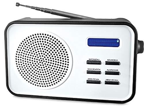Tragbares DAB Radio DAB+, UKW zweizeiligem Display,