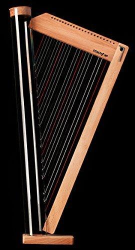 Arpa in kit 22 corde