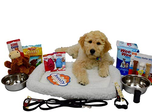 Open Road Goods Puppy Starter Kit Bundle Deluxe Edition in Branded Gift Box, All Top Name, 5 Star Brands! 6 Foot Leash (1