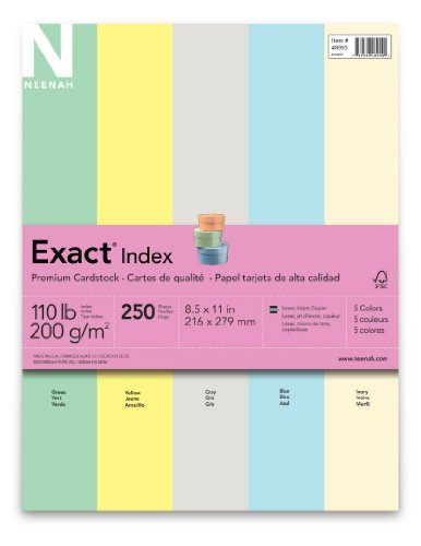 Neenah Wausau Exact Index Cardstock 110 lb 85 x 11 Inches 5 Color Pastel Assortment 250 Sheets 48990 Green Canary Gray Blue amp Ivory