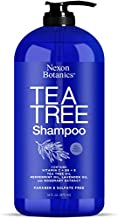 Nexon Botanics Tea Tree Oil Shampoo 16 fl oz - Special Shampoo for Itchy, Dry Scalp and Dandruff - Includes Pure, Natural Lavender, Peppermint, Tea Tree Oils - Sulfate Free and Paraben Free