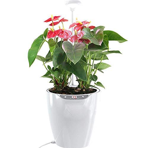 CRZJ Jardin d'intérieur d'herbe de LED, Culture hydroponique Croissante Kit de Jardin d'herbes fraîches Intelligent Sprout d'intérieur Intelligent a mené des lumières Pot de Fleur