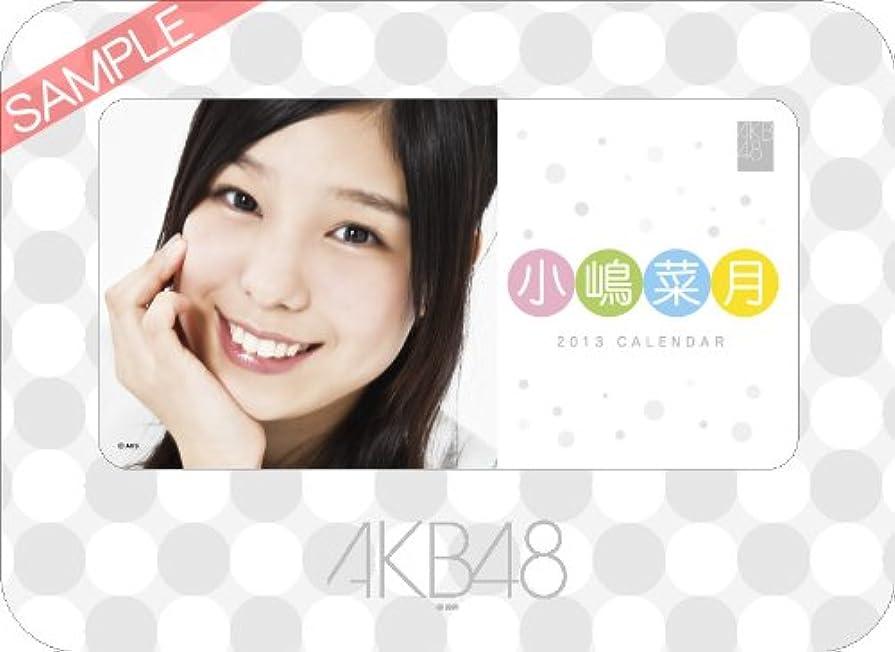 顕著本当のことを言うと留まる卓上 AKB48-164小嶋 菜月 カレンダー 2013年