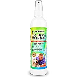 Dog Breath Freshner - Best Dog Teeth Cleaning Products