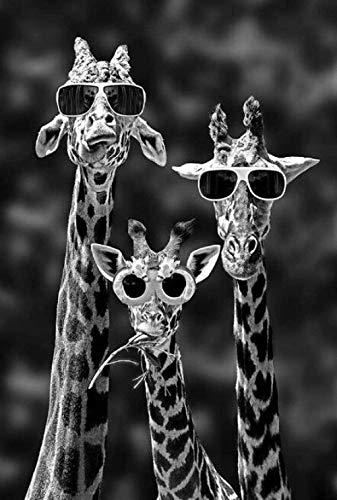 Jirafas con gafas de sol Pintura en lienzo Arte de pared en blanco y negro Animales divertidos Carteles Impresiones Sala de estar Niños Habitación Decoración Imágenes 40X60Cm Sin marco
