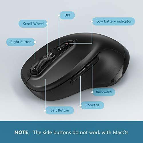 Jelly Comb Kabellose Maus, Dual Bluetooth & 2.4G Multi-Device Funkmaus, DPI 1000-1600-2400 Einstellbare Wireless Maus für Windows/Mac OS/iOS/Android/iPad OS, Schwarz