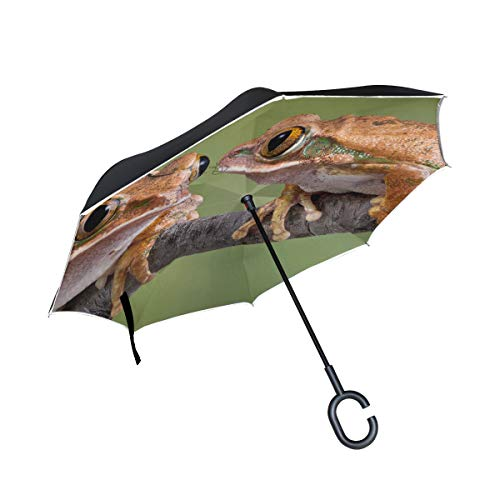 Lowest Price! PNGLLD Frogs Animal Branch Inverted Umbrella Double Layer Reverse Folding Umbrella wit...
