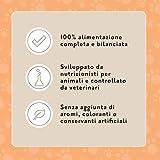 Zoom IMG-1 marchio amazon lifelong complete alimento