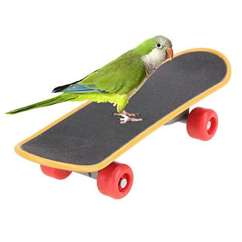 HONGSHENG Papagei Spielzeug, Kleine Und mittlere Papageien, Pädagogisches Spielzeug, Poliert, Greifen Bord, Mini Skateboard, Schlittschuhe, Papagei Ausbildung, Große Und mittlere Papagei Spielzeug