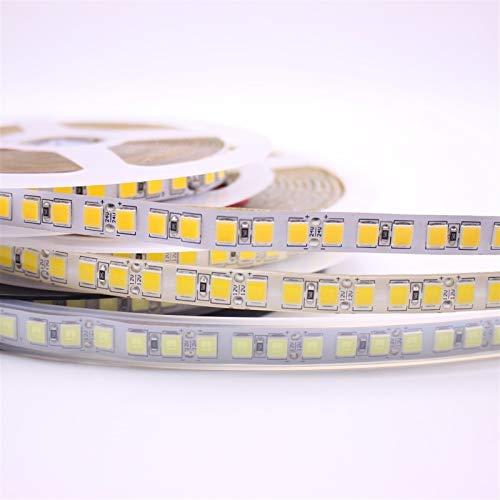 H/A 5M 600 LED 5054 destaca LED Sttrip, 12V 24V lámpara flexible 120 LED/M de alto brillo luego 5050 LED con blanco cálido PANGP (color: IP20, color emisor: blanco cálido)