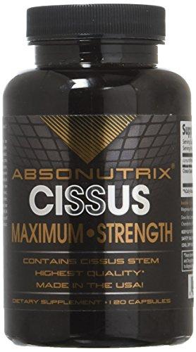 Absonutrix Cissus