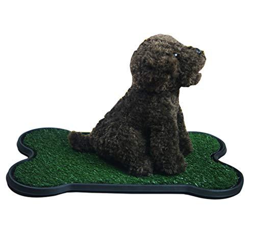 YOUJIAA Bandeja Sanitaria de Adiestramiento para Perros Césped Artificial Inodoro Interior Almohadilla de Entrenamiento de Hierba (Verde, 42 * 67cm)