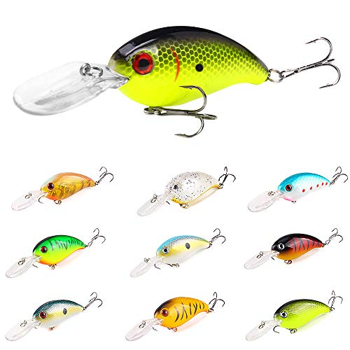 INTSUN Crankbaits Fishing Lures Set 10Pcs, Lifelike Bass Lures, Treble Hooks 3D Eyes Swimbait Hard Baits with Deep/Shallow Divers, for Freshwater and Saltwater