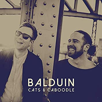 Cats & Caboodle