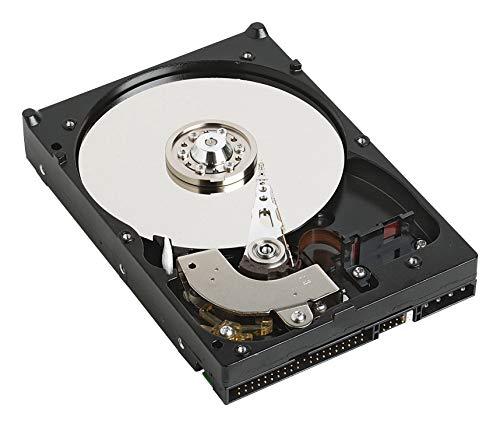 Western Digital WD800BB 80GB 7200RPM 2MB CACHE IDE Bulk/OEM 3.5 Inch Desktop Hard Drive (Renewed)