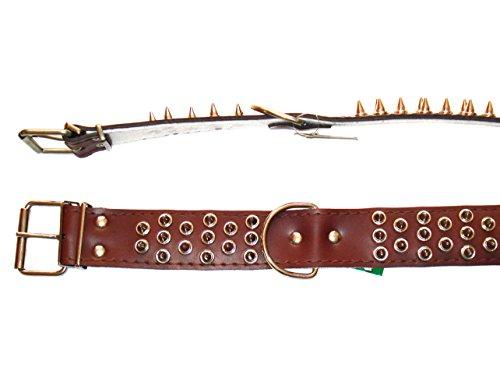Milan Hundehalsband aus Leder mit Stachel-Nieten, 65cm/50mm, Braun