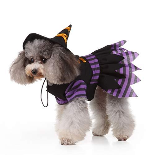 Balacoo Hund Hexe kostüm-Kleiner Hund Halloween kostüme lustiges Haustier kostüm kreative Hexe mit Hut Cosplay Kleidung für hündchen hundegröße XL